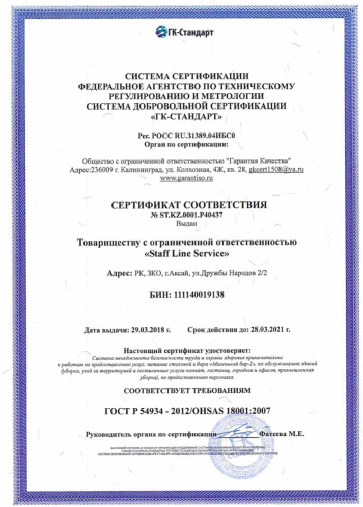 Сертификат OH SAS 18001 пример